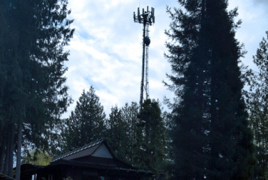 Home with cell tower in wooded area